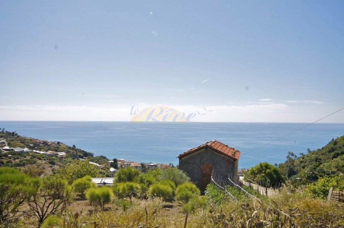 Rustic with sea view for sale in Bordighera. R 995