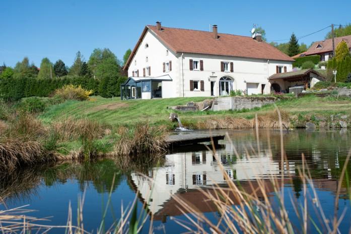 St. Nabord, Vogezen, luxe goed met boerderij en bijgebouwen op 1ha