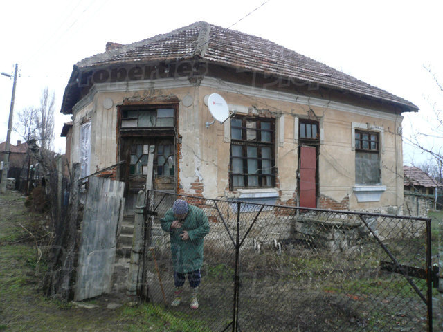 Old house with large garden and vineyard near Vidin